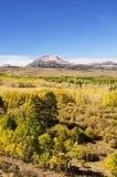 Östlig toppig bergskedja Aspen Color Royaltyfri Fotografi