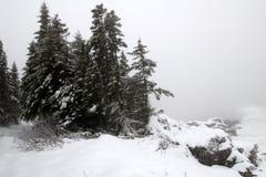 östlig vinter för kust Royaltyfria Foton