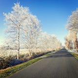 Östliga Frisia Fotografering för Bildbyråer
