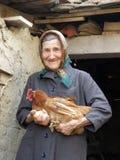Östligt - europeisk gammal höna för bondekvinnainnehav royaltyfria foton