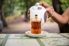 Östligt svart te i exponeringsglas på en östlig matta Östligt tebegrepp Armudu traditionell kopp baltisk havssolnedgång för bakgr royaltyfria bilder