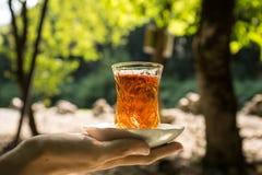 Östligt svart te i exponeringsglas på en östlig matta Östligt tebegrepp Armudu traditionell kopp baltisk havssolnedgång för bakgr arkivbild
