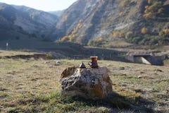 Östligt svart te i glass utomhus- bergbakgrund Östligt tebegrepp Armudu traditionell kopp Grön natursommar arkivfoton