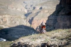 Östligt svart te i glass utomhus- bergbakgrund Östligt tebegrepp Armudu traditionell kopp Grön natursommarbackgrou royaltyfri foto