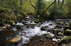 Östligt vatten sammanfogar Horner vatten fotografering för bildbyråer