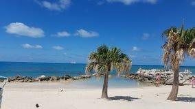 Östrand med palmträd Arkivfoto