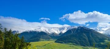 Ötztal阿尔卑斯在春天 免版税库存图片