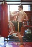 Övande kickboxing för boxare Royaltyfri Foto