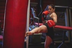 Övande kickboxing för kvinnlig boxare Royaltyfria Bilder