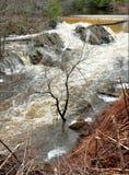 Över att flöda skapar den Saco floden prålig översvämning Arkivbild