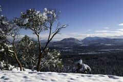 Över att se den snöig dalen arkivfoton