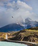 Över berg vänden för Andean kondor Royaltyfria Bilder