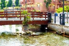 över brogångarefloden arkivbild