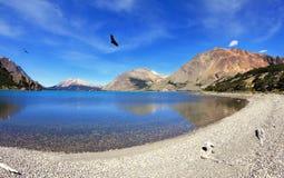 Över den blåa sjön vänder den rov- kondor Royaltyfria Bilder