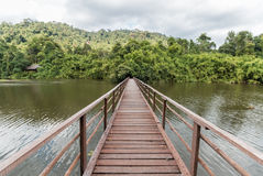 över den träbrofloden Royaltyfri Foto