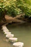 över flodstenar Arkivbilder