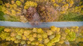 Över huvudet flyg- bästa sikt över den raka vägen i färgrik apelsin för bygdhöstforestFall, gräsplan, guling, rött träd Royaltyfri Fotografi