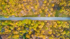 Över huvudet flyg- bästa sikt över den raka vägen i färgrik apelsin för bygdhöstforestFall, gräsplan, guling, rött träd Arkivbilder