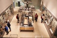 Över huvudet sikt av den upptagna museuminre med besökare royaltyfria bilder