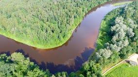Över huvudet sikt av floden över skogen Arkivbilder