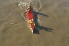 Över huvudet sikt av kanotloppet, Delaware River, Catskills, Callicoon, NY arkivbild