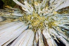 Över huvudet sikt av stalaktit Royaltyfria Bilder
