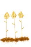 Över huvudet sikt av växter som göras med olik rå pasta fotografering för bildbyråer