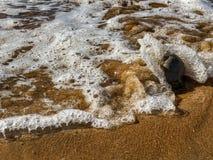 Över huvudet tillfÃ¥ngatagande av Atlantic Ocean vÃ¥gor som bryter pÃ¥ sandstrandshorelinen fotografering för bildbyråer