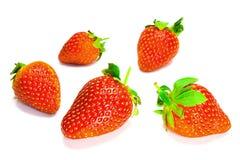 över jordgubbewhite royaltyfri foto