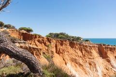 Över klipporna på Praia da Falesia, Algarve Royaltyfria Bilder