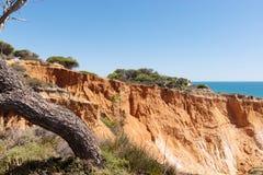 Över klipporna på Praia da Falesia, Algarve Arkivfoto