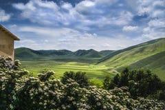 Över kullarna Arkivbild