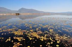 Över LaShiHai en sjö Royaltyfri Bild
