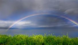 över regnbågevatten arkivbild