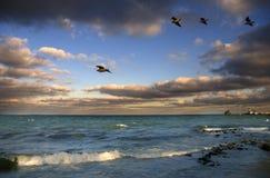 över seashoresolnedgång Arkivfoton