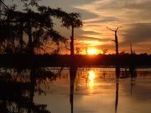 över solnedgångswamp Arkivbilder
