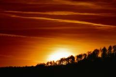 över solnedgångtrees Arkivfoto