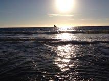 över Stillahavs- solnedgång Royaltyfria Bilder