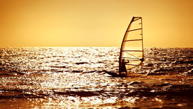 över surfare för havssilhouettesolnedgång Royaltyfri Bild