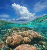 Över-under det undervattens- himmelmolnet och korallreven royaltyfri foto