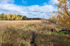 Över våtmarkerna på den Eagan fristaden Royaltyfri Foto