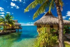 Över vattenbungalower och den gröna lagun Moorea, franska Polynesien royaltyfria bilder