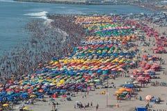 Överbefolkad strand Royaltyfri Bild