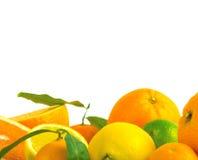 Överbelastning för vitamin C, Royaltyfri Bild