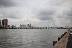 Överblick över nieuwen maas i Rotterdam royaltyfri fotografi
