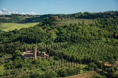 Överblick av gröna kullar, vingårdar, skogar och det stod högt fästet nära Orvieto Royaltyfria Foton