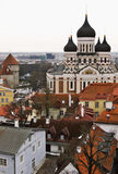 Överblick av Tallinnen, Estland gammal stad Arkivfoto