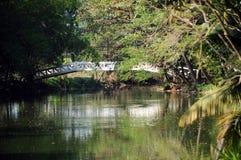 Överbrygga över floden Royaltyfri Foto