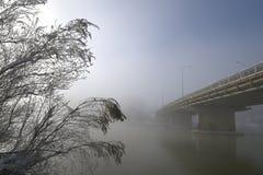 Överbrygga sträckning in i den frostiga dimman Arkivbilder