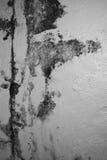 Överdriven fuktighet kan orsaka form- och skalningsmålarfärgvägg, sådant a royaltyfria bilder